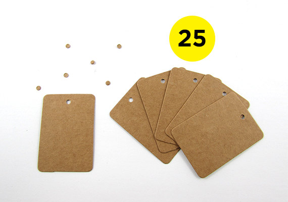 25 Mini Rectangle Kraft Gift Tags